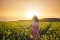 一个油菜籽领域的妇女在日落 库存图片