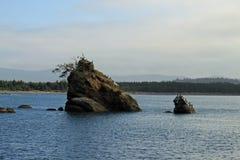 一个海湾的一个小海岛以鸟休息 库存照片
