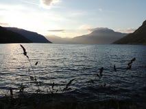 一个海湾的看法在日落期间的 库存图片