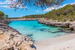一个海湾的绿松石水在Mondragà ³自然公园, Mallorc 图库摄影