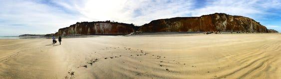 一个海滩和峭壁的全景在冬天 免版税库存照片