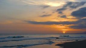 一个海滩的树稍兵在马尔韦利亚,西班牙 股票视频