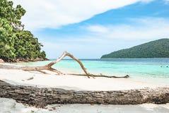一个海滩 免版税图库摄影