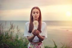 一个深色的少妇的画象用在温暖的日落背景的一个大蒲公英  夏天,户外 库存图片