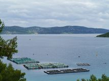 一个渔场在克罗地亚的亚得里亚海 库存图片