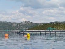 一个渔场在克罗地亚的亚得里亚海 免版税库存照片