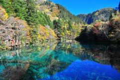 一个湖和树与五颜六色的叶子在九寨沟 免版税库存照片