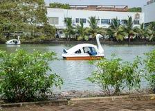 一个湖在公园 免版税图库摄影