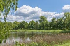一个湖在公园 免版税库存照片