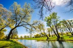一个湖在公园 库存照片