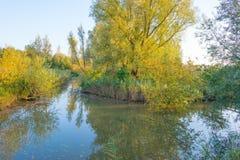 一个湖的岸在阳光下在秋天 库存照片