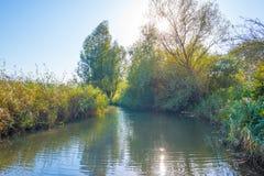 一个湖的岸在阳光下在秋天 库存图片