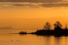一个湖的美丽的景色日落的,与橙色口气、鸟在水和树 免版税库存图片