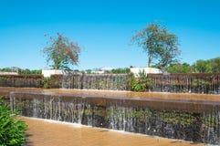 一个湖的落的落下的水在公园 植被与植物和有些花 免版税库存照片
