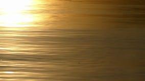一个湖的金黄看的水精采日落的 影视素材