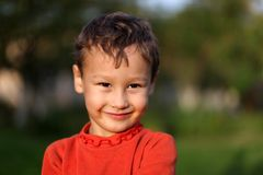 一个滑稽的小男孩四岁小孩的画象 免版税库存图片