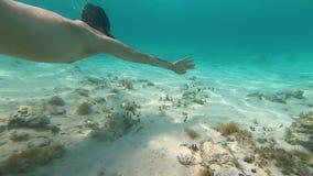 一个潜水的面具的人在底下水下的GoPro Hero7游泳 股票录像