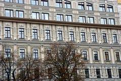 一个灰色多层的大厦的门面与树的在城市街道上 库存照片