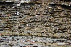 一个灰色石墙的特写镜头 免版税图库摄影