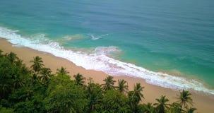 一个热带加勒比海滩的空中寄生虫视图在Bocas del托罗,巴拿马的 股票录像
