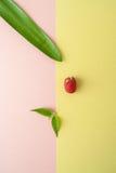 一个热带植物的一片莓、薄菏和叶子一淡色yel的 免版税库存照片
