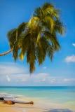 一个热带海滩场面的看法 库存照片