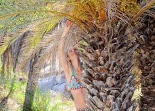 一个热带海滩的美丽的少妇在棕榈树附近 库存图片