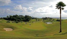 一个热带高尔夫球场的一条航路 库存照片