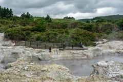 一个热的地热水池在新西兰 免版税库存图片