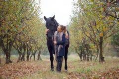 一个牛仔帽的美丽的时髦的女孩有走在秋天森林里的马的,乡村模式 图库摄影