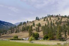 一个牧人农厂场面 免版税库存照片