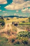 一个牧人农村风景的葡萄酒照片与包缠往豪华的绿色绵延山的石渣路的过去百合池塘 免版税库存图片