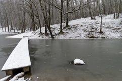 一个狭窄的人行桥向最近结冰的池塘 库存照片