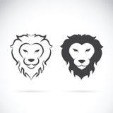 一个狮子头设计的传染媒介在白色背景的 免版税库存照片