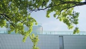 一个现代大厦的上面 免版税库存图片