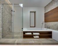 一个现代样式的卫生间 库存图片