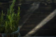 一个玻璃瓶子的罗斯玛丽,新鲜的迷迭香,葡萄酒木背景分支  免版税库存图片