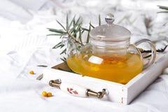 一个玻璃茶壶用海鼠李 库存照片
