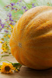 一个瓜,金瓜家族的植物,与在土气木桌上的黄色和紫色野花 库存图片