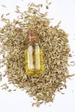 一个瓶与新鲜的绿色茴香枝杈和茴香籽的茴香精油在背景中 库存图片