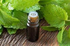 一个瓶与蜜蜂花枝杈的蜜蜂花精油 免版税库存图片
