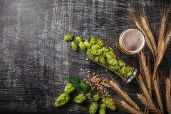 一个瓶啤酒用绿色蛇麻草、燕麦、麦子小尖峰、开启者和玻璃用黑暗和低度黄啤酒在黑被抓的粉笔板 库存照片