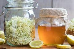 一个瓶子蜂蜜和长辈开花,准备做糖浆 图库摄影