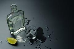 一个瓶银色龙舌兰酒 库存图片