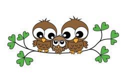 一个甜小猫头鹰家庭 库存图片