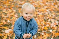 一个甜微笑的小孩男婴的接近的画象秋天同水准的 库存照片