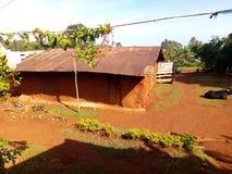 一个生存房子在东乌干达,非洲 图库摄影