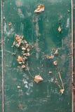 一个生锈的箱子的底部有干叶子的作为背景 图库摄影