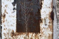 一个生锈的金属门的特写镜头 库存照片