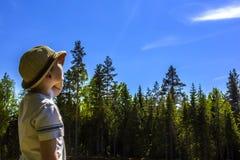 一个男孩在一个绿色森林和蓝天的背景的夏天调查距离 库存图片